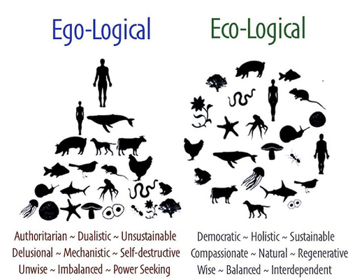 Ecological0 %281%29